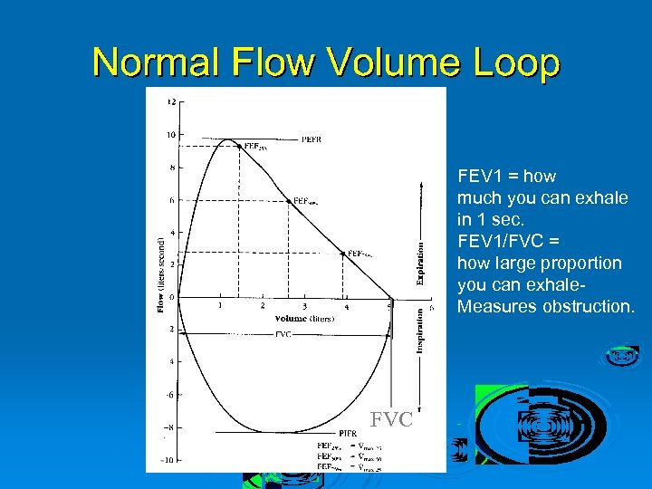 FEV 1 = how much you can exhale in 1 sec. FEV 1/FVC =