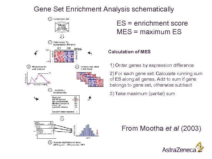 Gene Set Enrichment Analysis schematically ES = enrichment score MES = maximum ES Calculation