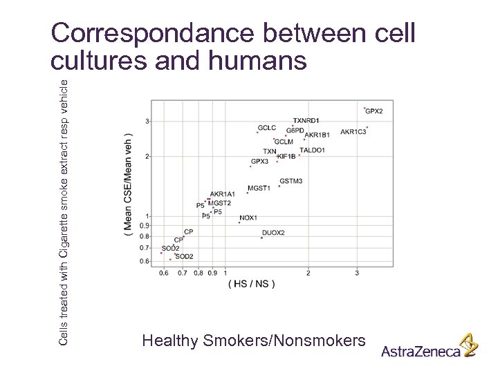 Cells treated with Cigarette smoke extract resp vehicle Correspondance between cell cultures and humans