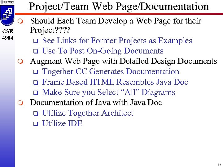 Project/Team Web Page/Documentation m CSE 4904 m m Should Each Team Develop a Web