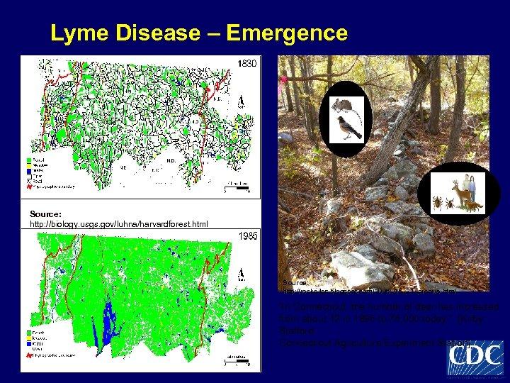 Lyme Disease – Emergence Source: http: //biology. usgs. gov/luhna/harvardforest. html Source: http: //rockpiles. blogspot.