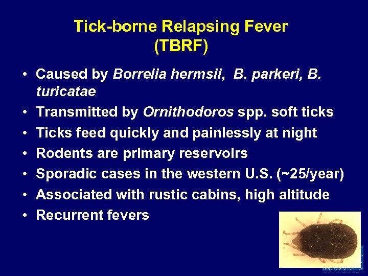Tick-borne Relapsing Fever (TBRF) • Caused by Borrelia hermsii, B. parkeri, B. turicatae •