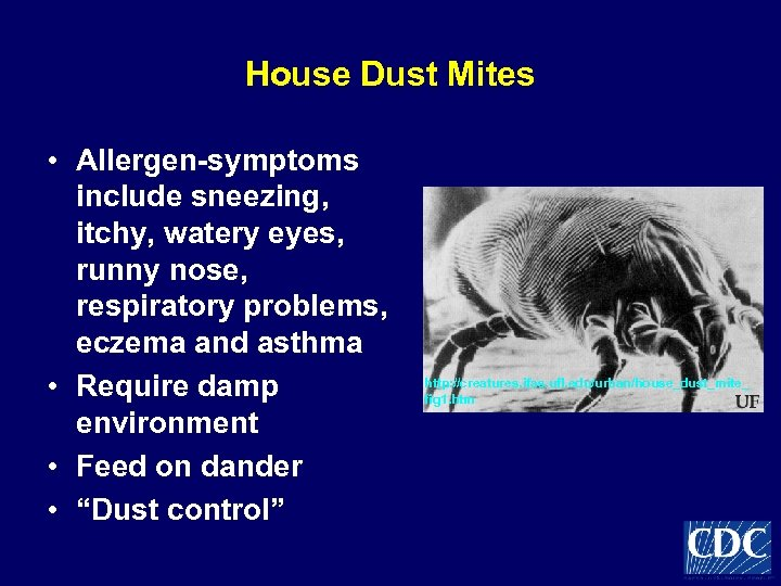 House Dust Mites • Allergen-symptoms include sneezing, itchy, watery eyes, runny nose, respiratory problems,