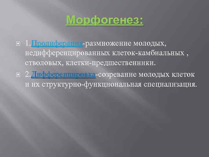 Морфогенез: 1. Пролиферация-размножение молодых, Пролиферация недифференцированных клеток-камбиальных , стволовых, клетки-предшественники. 2. Дифференцировка-созревание молодых клеток
