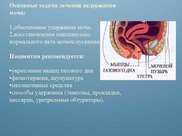 Основные задачи лечения недержания мочи: 1. обеспечение удержания мочи. 2. восстановление максимально нормального акта