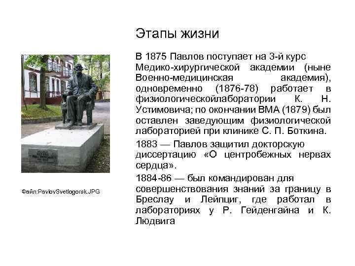 Этапы жизни Файл: Pavlov. Svetlogorsk. JPG В 1875 Павлов поступает на 3 -й курс