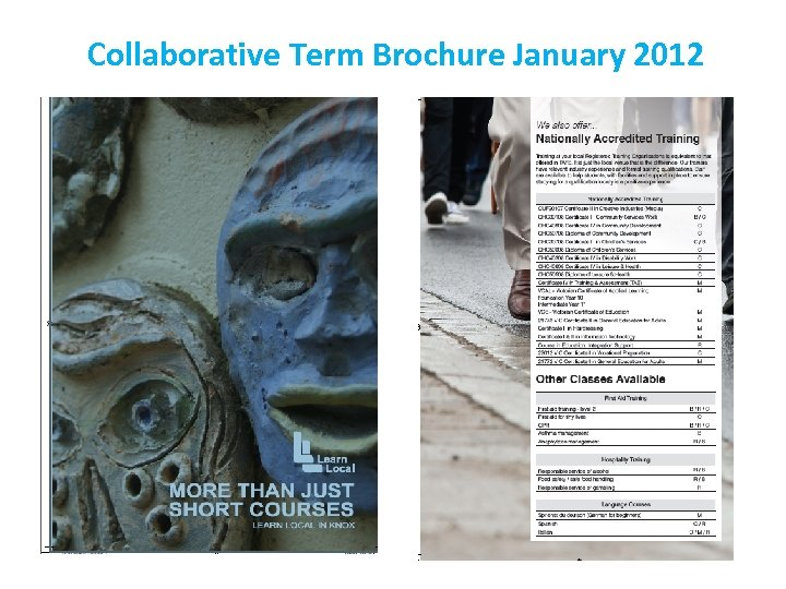 Collaborative Term Brochure January 2012