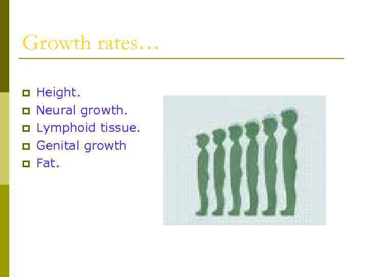 Growth rates… p p p Height. Neural growth. Lymphoid tissue. Genital growth Fat.