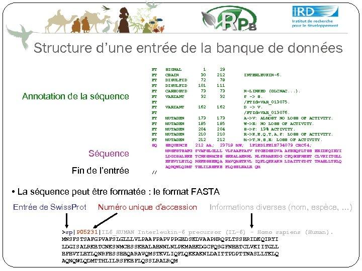 Structure d'une entrée de la banque de données Annotation de la séquence FT FT