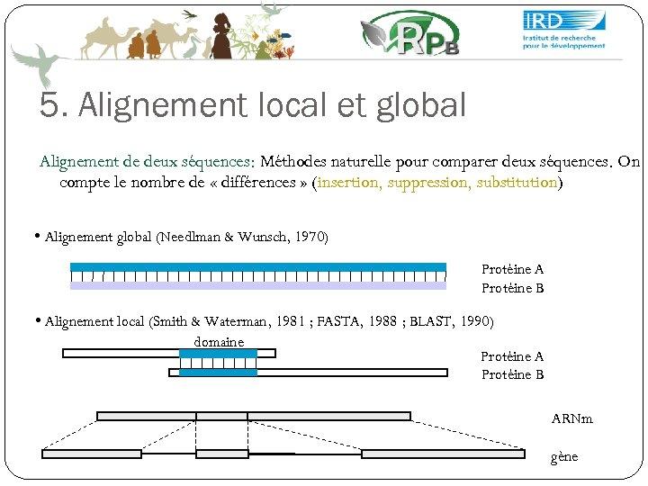 5. Alignement local et global Alignement de deux séquences: Méthodes naturelle pour comparer deux