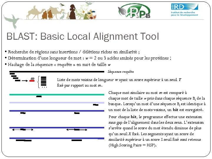 BLAST: Basic Local Alignment Tool • Recherche de régions sans insertions / délétions riches