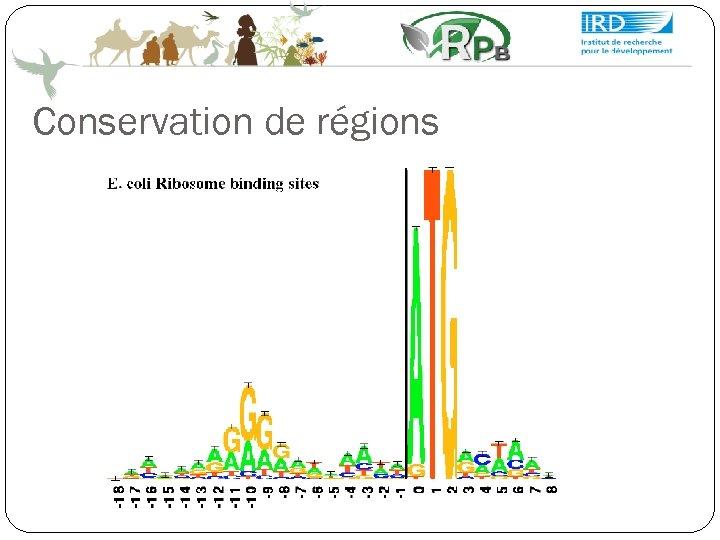 Conservation de régions