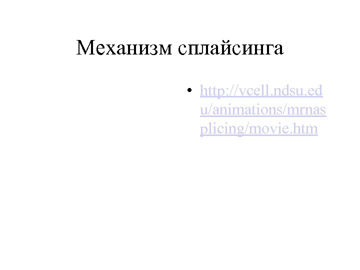 Механизм сплайсинга • http: //vcell. ndsu. ed u/animations/mrnas plicing/movie. htm