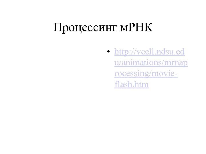 Процессинг м. РНК • http: //vcell. ndsu. ed u/animations/mrnap rocessing/movieflash. htm