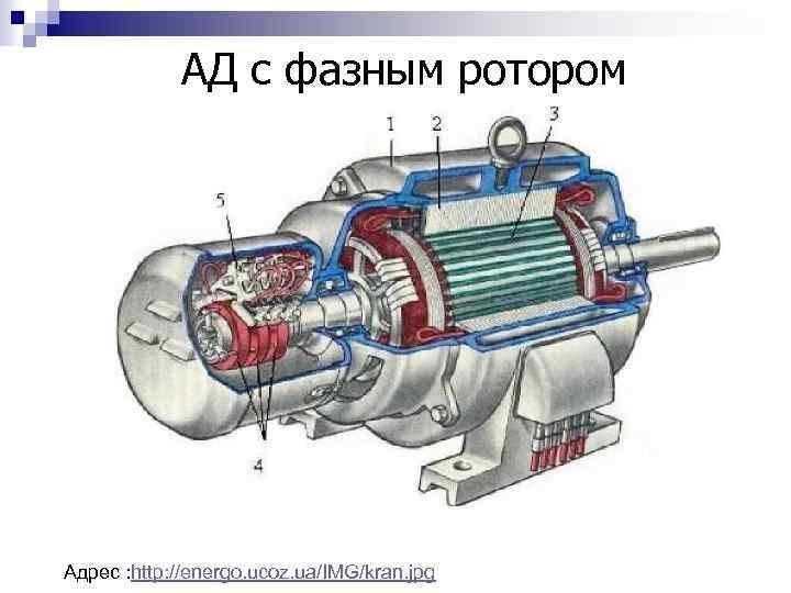 АД с фазным ротором Адрес : http: //energo. ucoz. ua/IMG/kran. jpg