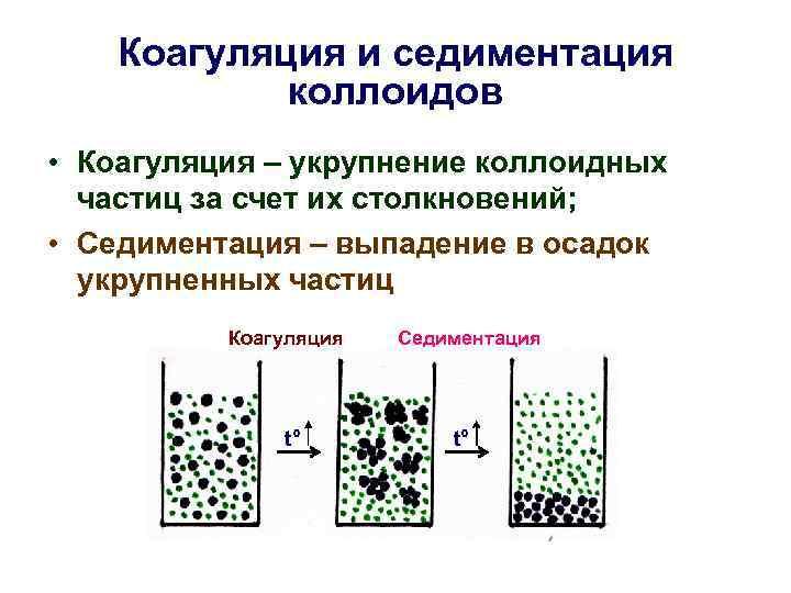 Коагуляция и седиментация коллоидов • Коагуляция – укрупнение коллоидных частиц за счет их столкновений;
