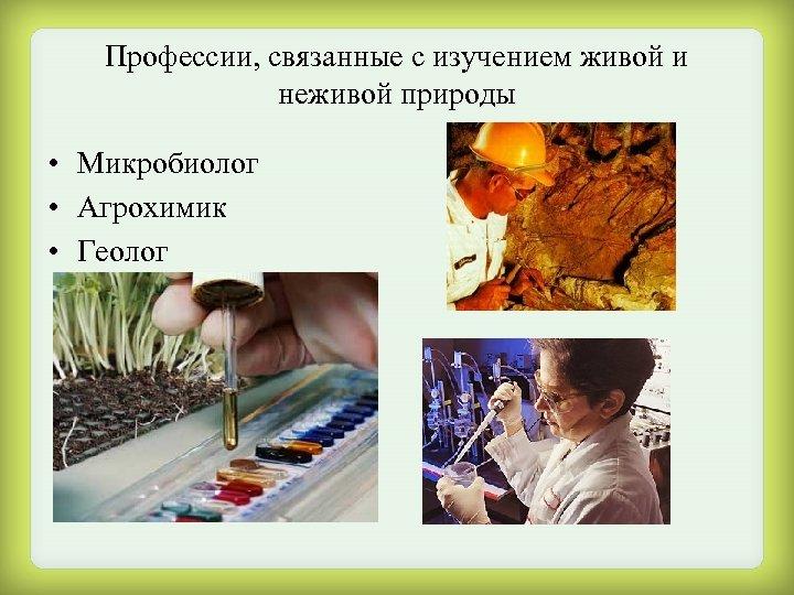 Профессии, связанные с изучением живой и неживой природы • Микробиолог • Агрохимик • Геолог