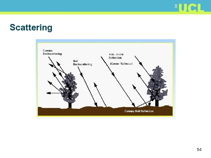 Scattering 54