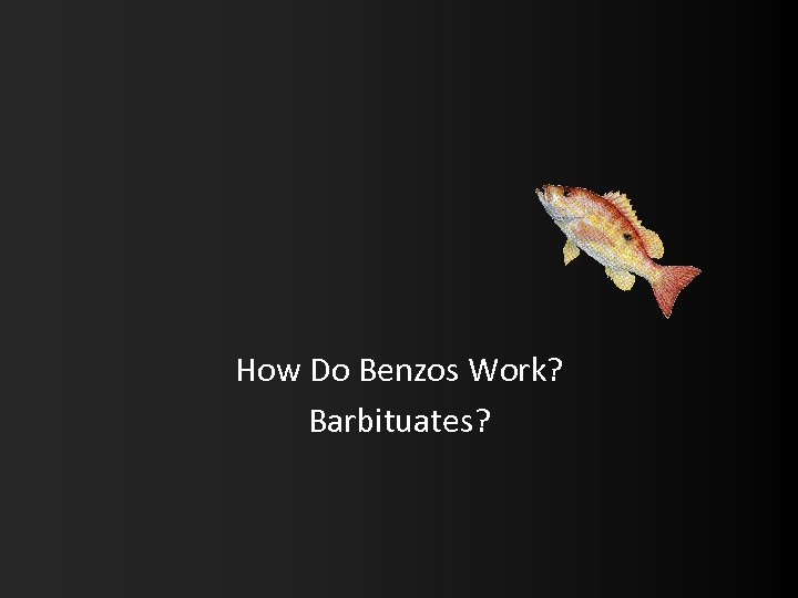 How Do Benzos Work? Barbituates?