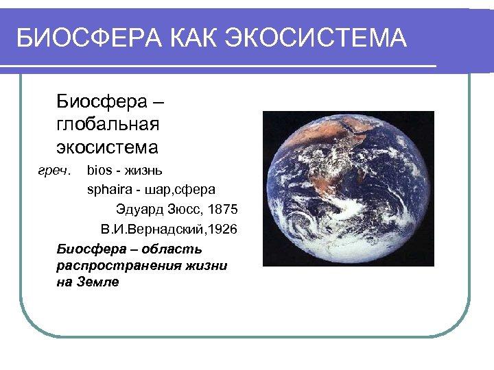 БИОСФЕРА КАК ЭКОСИСТЕМА Биосфера – глобальная экосистема греч. bios - жизнь sphaira - шар,