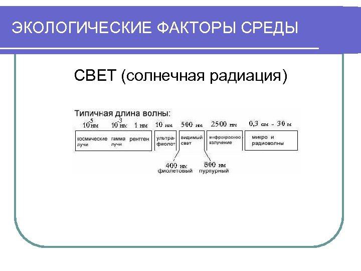 ЭКОЛОГИЧЕСКИЕ ФАКТОРЫ СРЕДЫ СВЕТ (солнечная радиация)