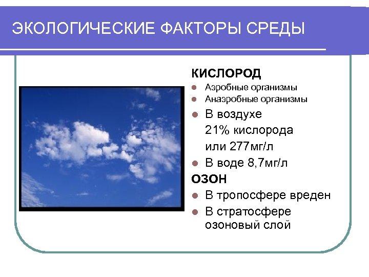 ЭКОЛОГИЧЕСКИЕ ФАКТОРЫ СРЕДЫ КИСЛОРОД Аэробные организмы l Анаэробные организмы l В воздухе 21% кислорода