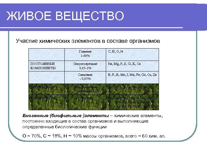 ЖИВОЕ ВЕЩЕСТВО Участие химических элементов в составе организмов Главные 1 -60% ПОСТОЯННЫЕ КОМПОНЕНТЫ Сопутствующие