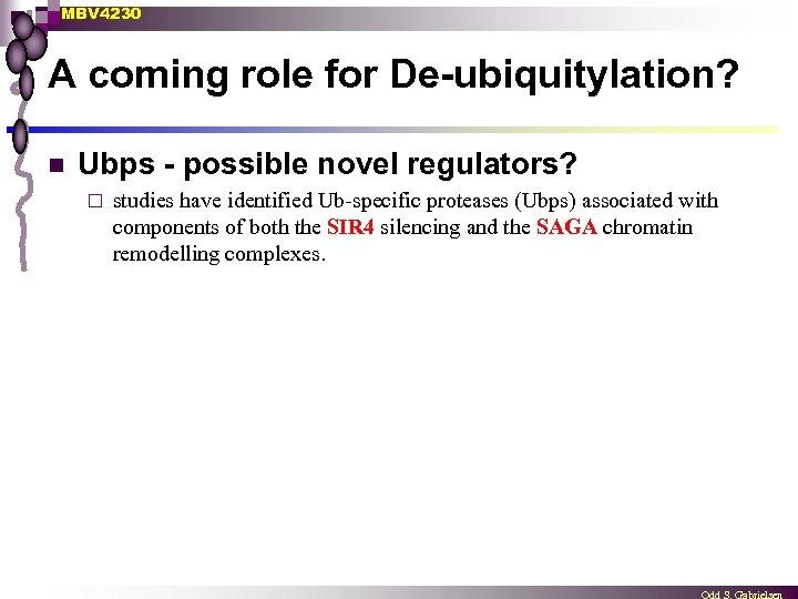 MBV 4230 A coming role for De-ubiquitylation? n Ubps - possible novel regulators? ¨
