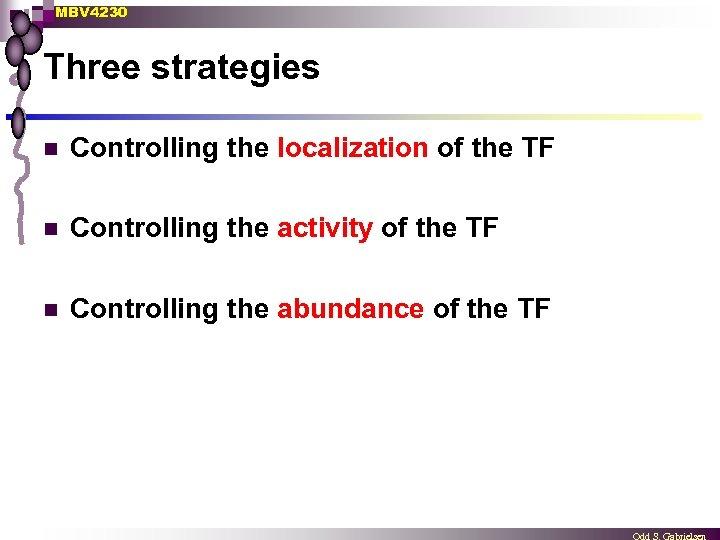 MBV 4230 Three strategies n Controlling the localization of the TF n Controlling the