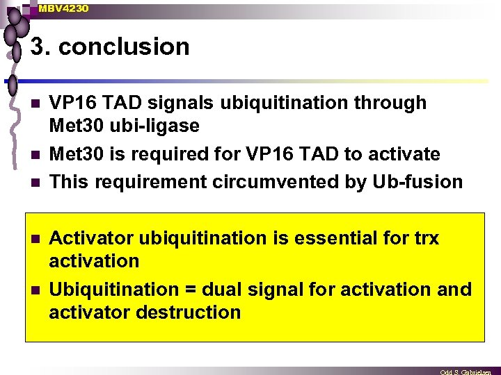 MBV 4230 3. conclusion n n VP 16 TAD signals ubiquitination through Met 30