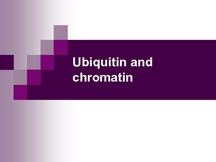 Ubiquitin and chromatin