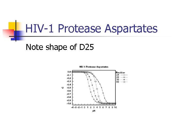 HIV-1 Protease Aspartates Note shape of D 25