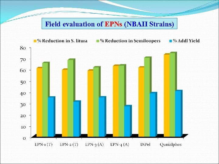 Field evaluation of EPNs (NBAII Strains)