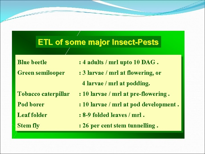 ETL of some major Insect-Pests Blue beetle : 4 adults / mrl upto 10