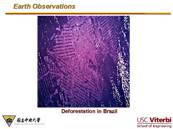 Earth Observations Deforestation in Brazil