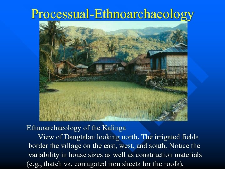Processual-Ethnoarchaeology of the Kalinga View of Dangtalan looking north. The irrigated fields border the