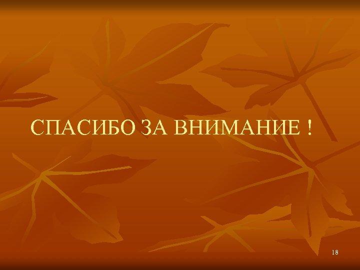 СПАСИБО ЗА ВНИМАНИЕ ! 18