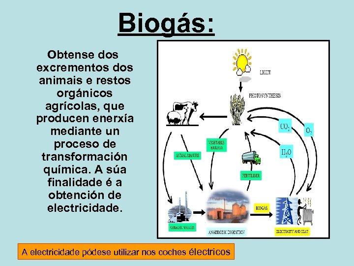 Biogás: Obtense dos excrementos dos animais e restos orgánicos agrícolas, que producen enerxía mediante