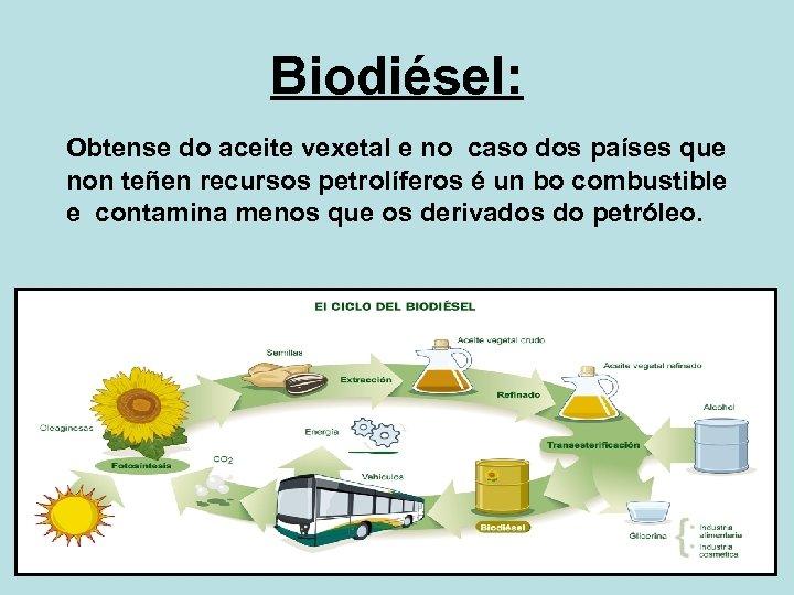 Biodiésel: Obtense do aceite vexetal e no caso dos países que non teñen recursos