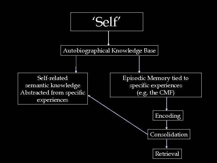 'Self' Autobiographical Knowledge Base Self-related semantic knowledge Abstracted from specific experiences Episodic Memory tied