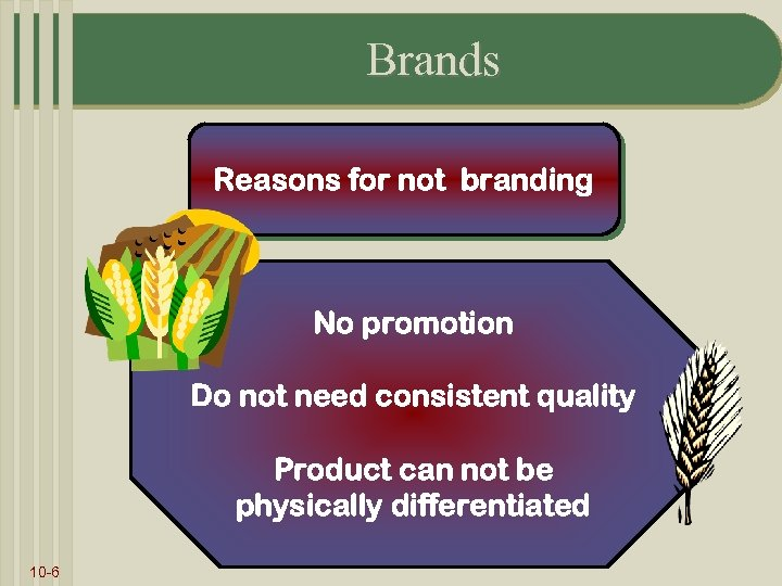 Brands Reasons for not branding No promotion Do not need consistent quality Product can