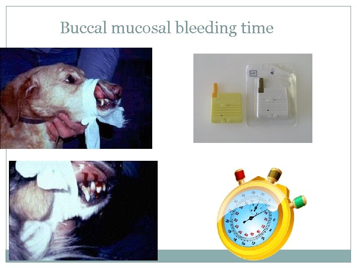 Buccal mucosal bleeding time