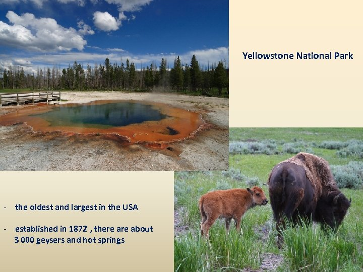 Yellowstone National Park - the oldest and largest in the USA - established in