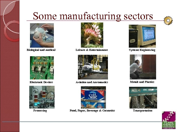 Some manufacturing sectors Biological and medical Leisure & Entertainment Systems Engineering Electronic Devices Aviation
