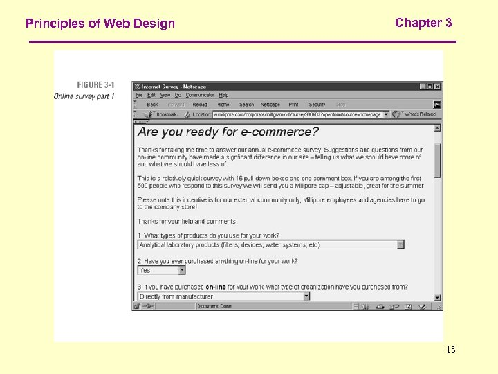 Principles of Web Design Chapter 3 13