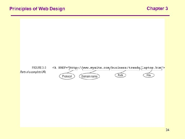 Principles of Web Design Chapter 3 24