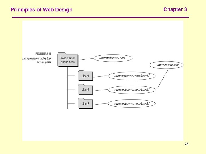 Principles of Web Design Chapter 3 28