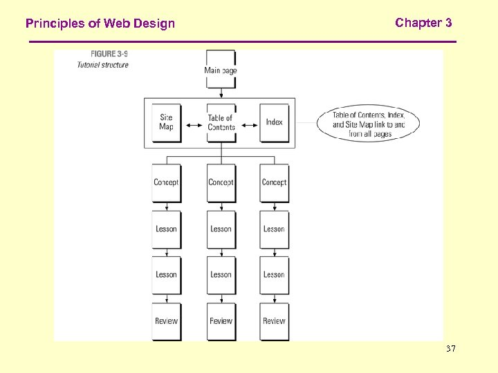 Principles of Web Design Chapter 3 37