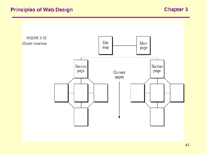 Principles of Web Design Chapter 3 43