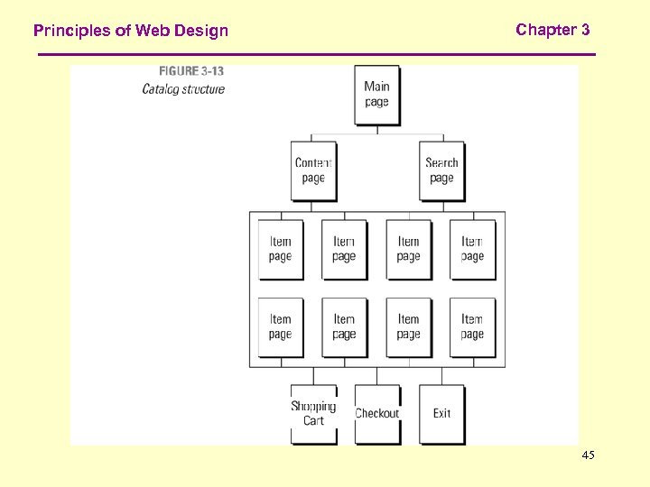 Principles of Web Design Chapter 3 45